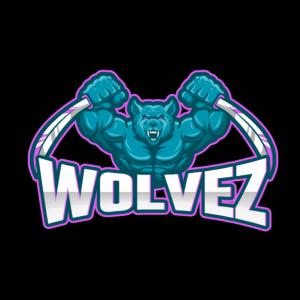 Custom Logo Designs for Esports